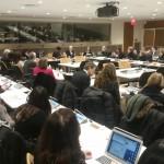 Cheryl leading UN Panel Feb 2015
